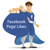 400+ international Facebook Page Likes