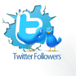 300+ internationale Twitter Followers